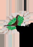 temeka Logo